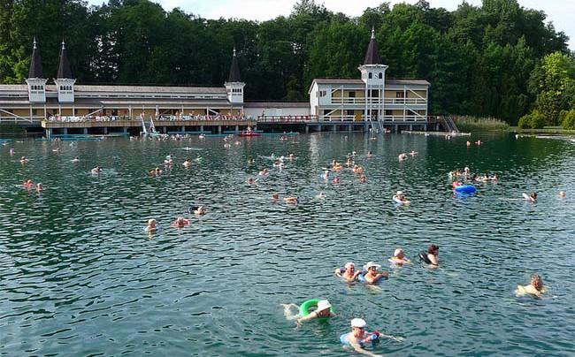 Венгерское озеро Хевиз
