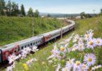 Стали известны бюджетные направления для поездок на поезде по России