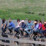 Ростуризм предложил выплачивать кешбэк за отдых в детских лагерях